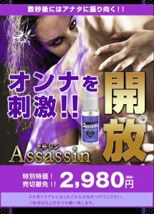 assassin_pc_07