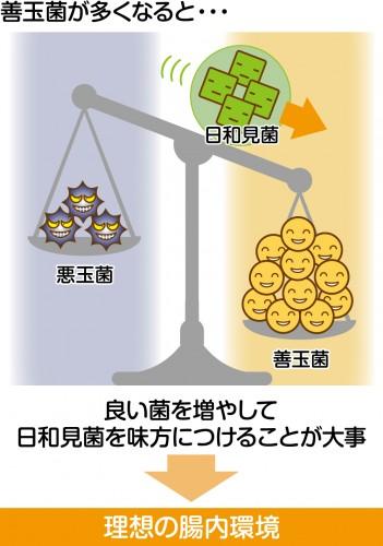 善玉_悪玉菌03