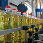 サラダ油が病気をつくる?理想的な油の摂り方〜オメガ3とオメガ6の最適バランスとは