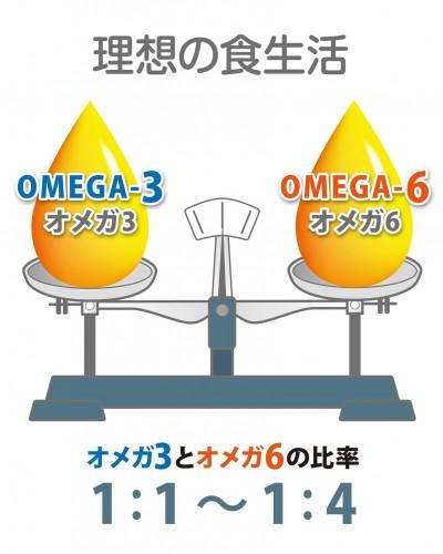 理想のオメガ3バランス
