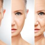 老化の最大の原因