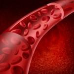 血流を良くする栄養素とオススメの本