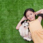 犬やネコなどのペットも美味しく飲める乳酸菌サプリ【人間用H&JIN】
